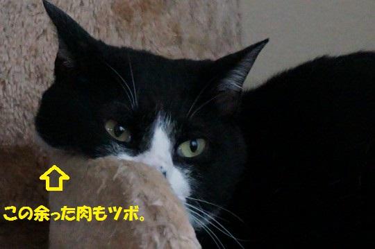 20141020-03.jpg