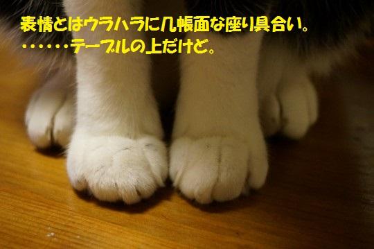 20141020-09.jpg