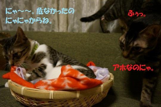 20141022-06.jpg