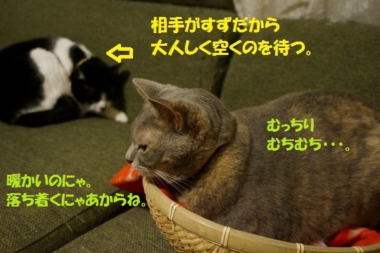 20141024-04.jpg
