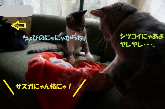 20141024-11.jpg