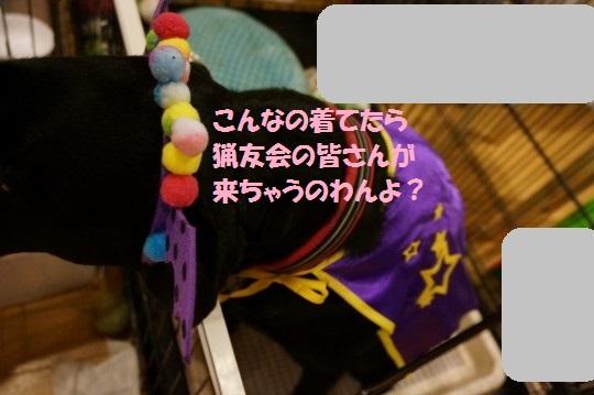 20141030-09.jpg