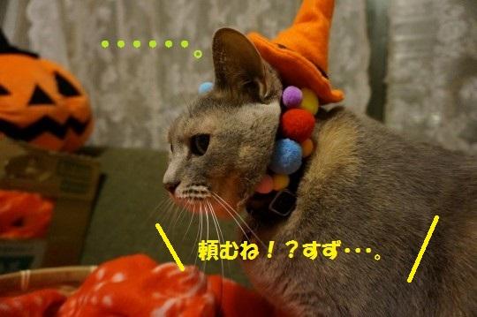 はろ2014-03