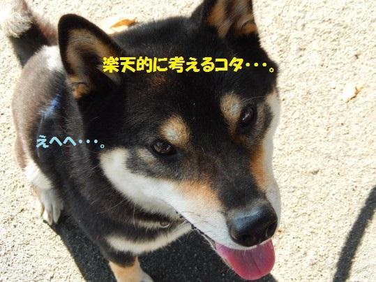20141103-04.jpg