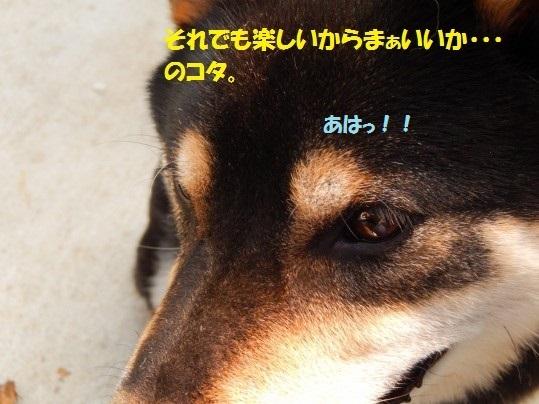 20141103-08.jpg