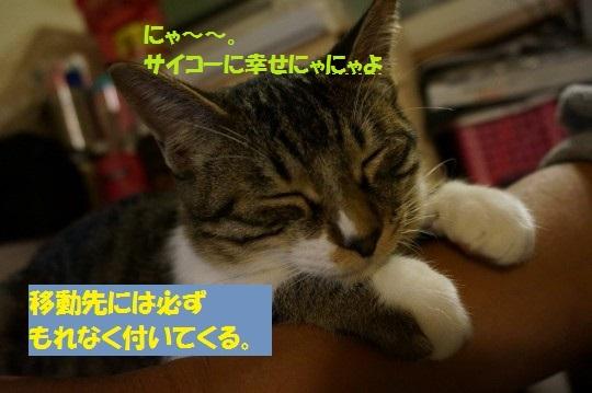 20141104-0004.jpg