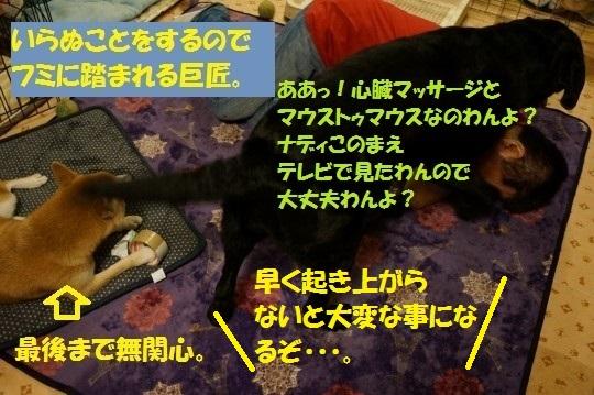 20141107-09.jpg