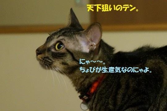 20141108-008.jpg