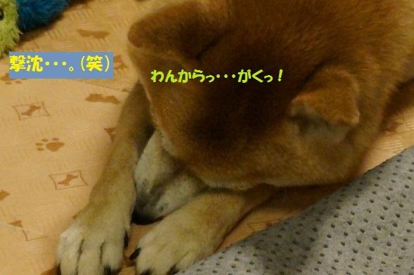 20141112-011.jpg