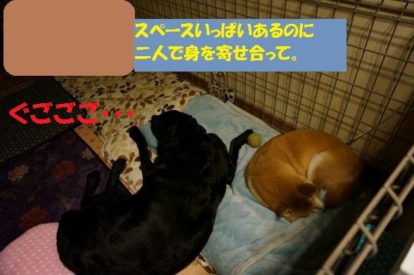 20141112-015.jpg