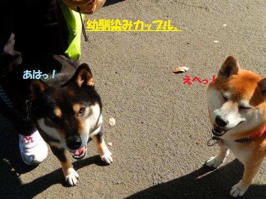 20141130-0002.jpg