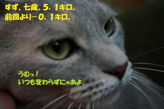 2014fuyu-05.jpg
