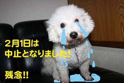 001_20130130191532.jpg