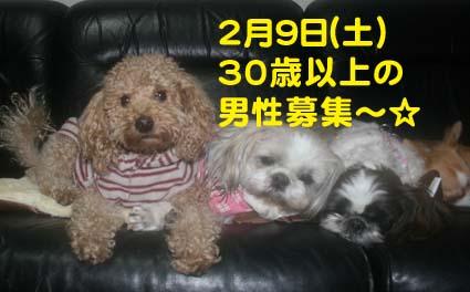 001_20130202230327.jpg