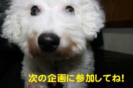 002_20130130191531.jpg