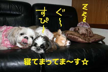 002_20130202230326.jpg