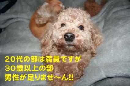 01_20130314021206.jpg