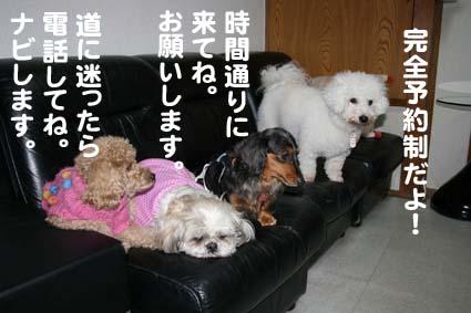 01_20130315114854.jpg