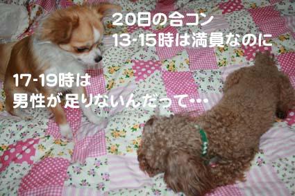 01_20130317062255.jpg