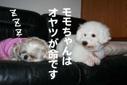 02_20130301200743.jpg