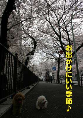 02_20130327203351.jpg