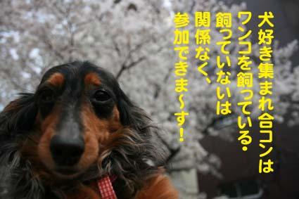 02_20130404194235.jpg