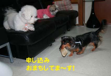 03_20130328204113.jpg