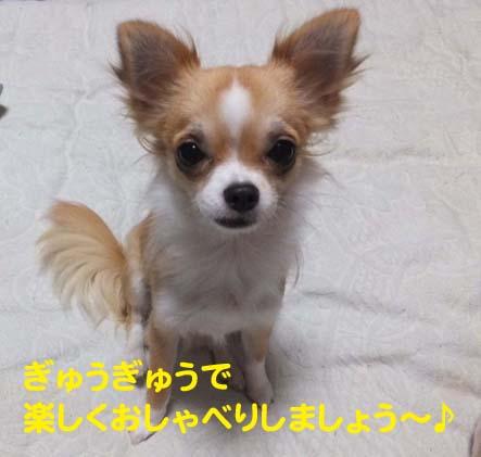 2_20130223051723.jpg