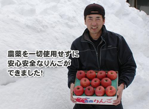 農薬を一切使ってないりんご【限定販売】