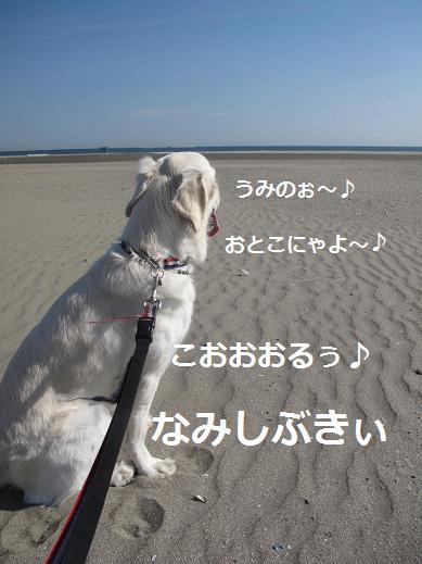 北島オペ三郎