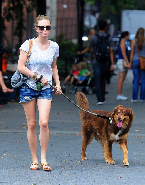 Amanda+Seyfried+Amanda+Seyfried+Walks+Dog+3HcgEc4_AKCl.jpg