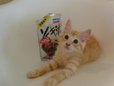 2010.8.18 フレイ君とソーキ汁