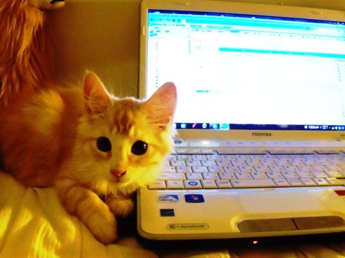 2010.8.15 瞳大きくかわいい PCと。Nさんと話中に