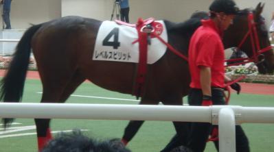 2010/6/20阪神4R新馬戦レベルスピリット画像