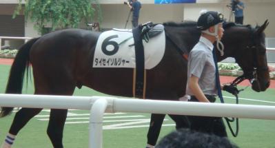 2010/6/20阪神4R新馬戦タイセイソルジャー画像