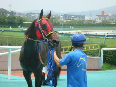 2010/7/10阪神新馬戦 エーシンジェネシス