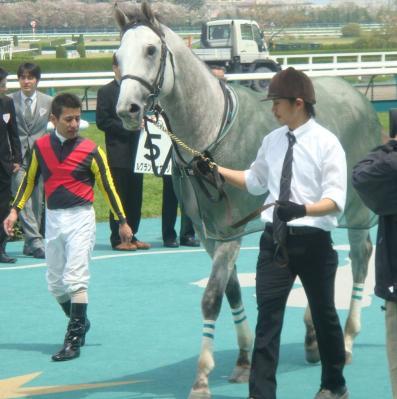 一着馬ルグランヴォヤージ写真