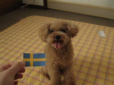 スウェーデン6