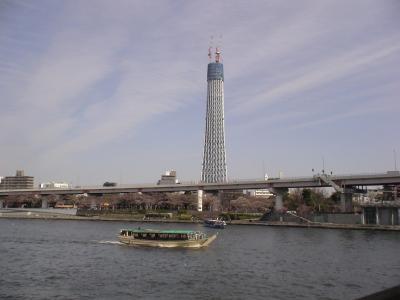 東京スカイツリーは328m
