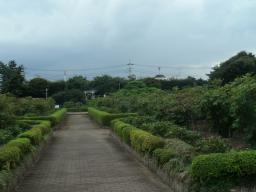 東松山 (5)
