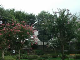 東松山 (18)