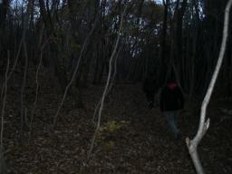 ワイルド笠山ん (9)