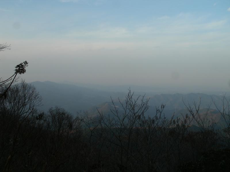 ワイルド笠山ん (4)