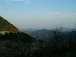 ワイルド笠山ん (1)