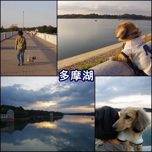 okamat1page.jpg