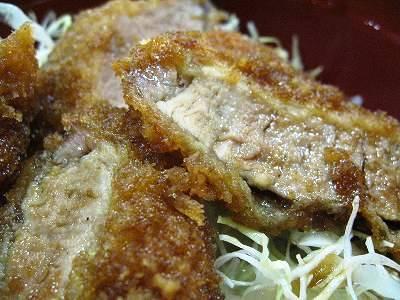 ソースひれかつ丼2