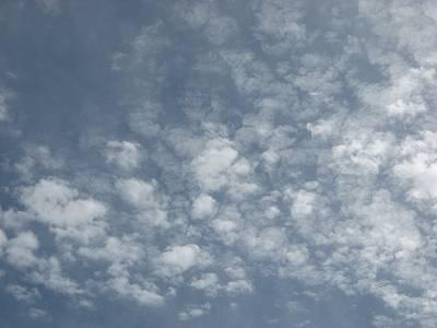 10/1のうろこ雲
