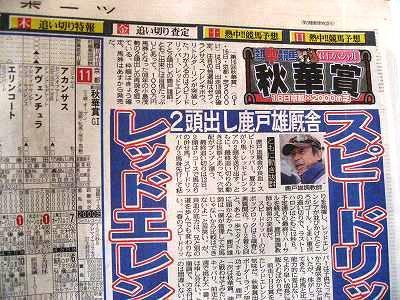 秋華賞の新聞
