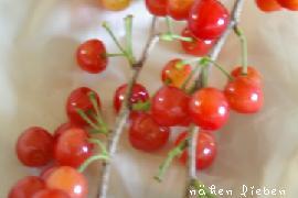 20110513-cherry.jpg