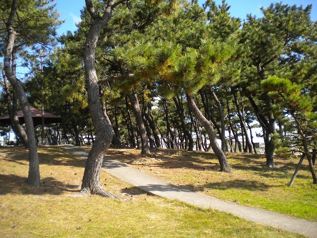10.11.27 明石 風の散歩道017